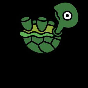 Turtle hates sit-ups