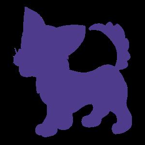 Kätzchen Silhouette Haustiere