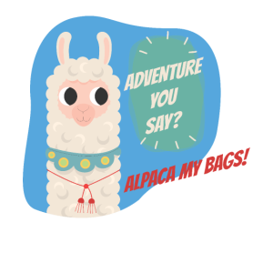 Alpaca Gift LLama Adventure Zoo Farm Animal