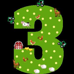 3. Geburtstag Junge Mädchen 3 Jahre Bauer Landwirt