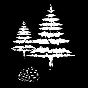 Baum Tannen Wald