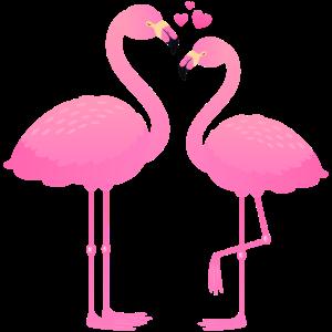 Flamingo Love Couple