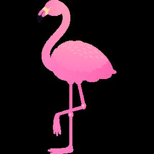 Cute Pink Flamingo Illustration