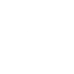 Männer auf Mission (Used)