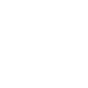 Official Team Leader (Used)