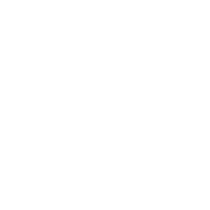 Official Team Member (Used)