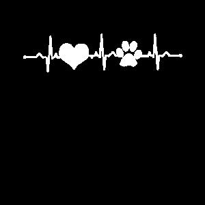Herzschlag Pfote Liebe
