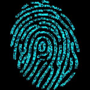 Binary Fingerprint
