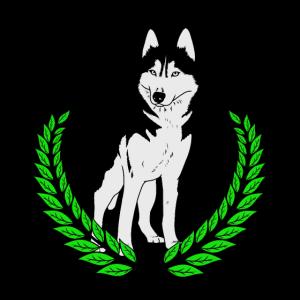 Husky Hunderasse Hund
