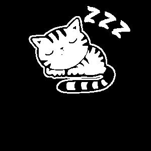 katze Müde/schlafen/faul