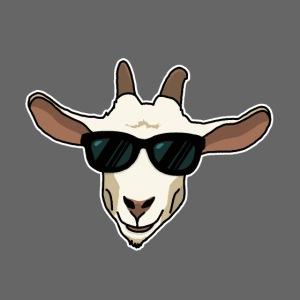 Ziege, Sonnenbrille, Tier, lustig, Geschenkidee