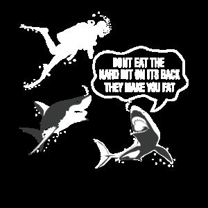 Tauchen Haie Lustig