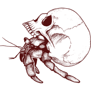 Krabbe und Schädel
