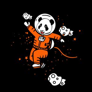 Astronaut Pandabär Weltraum Raumfahrt Raumschiff