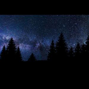 Landschaft Sternenhimmel Wald