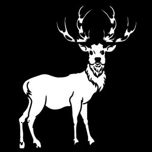 Hirsch Elch Schweden Norwegen Renntiere Waldtiere
