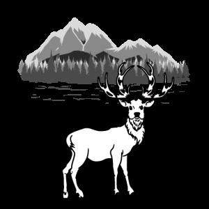 Wildnis Natur Hirsch Wild Elch