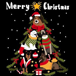 Weihnachtsbaum Hund Weihnachten Bescherung Hundebe