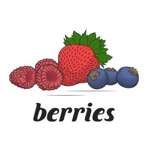 berries, fruit, blooms and berries, lingonberry