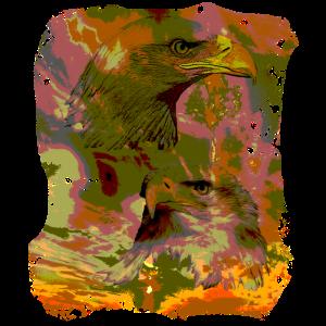 Adler,Tier,Tiere,Natur,Tier freund,Wald,Umwelt,