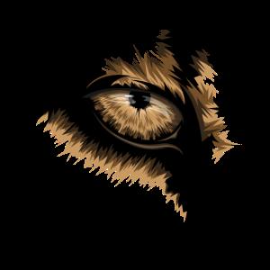 lion eyes symbol illustration
