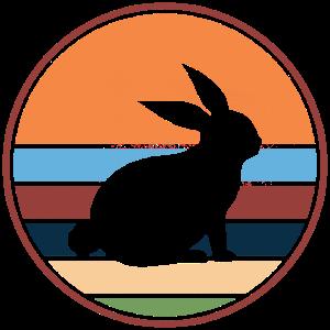 Retro / Vintage Hase