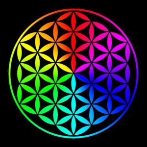 Flower of life rainbow Blume des Lebens Regenbogen