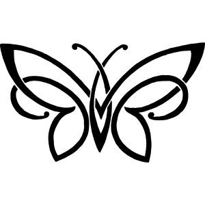 butterfly42414