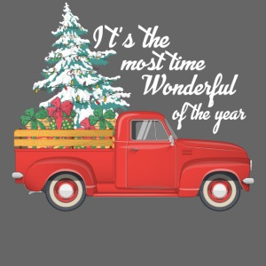 It's The Most Time Wonderful Of The Year