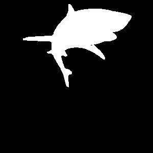 Hai Shark Haifisch Jungen Ham Sprüche lustig cool