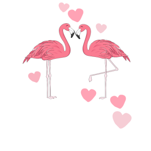 30 Jahre Flamingo Matching Anniversary Outfit
