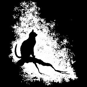 Katze und Sterne