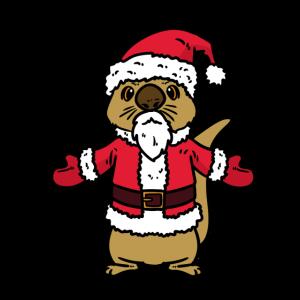 Otter Weihnachts Otter Santa