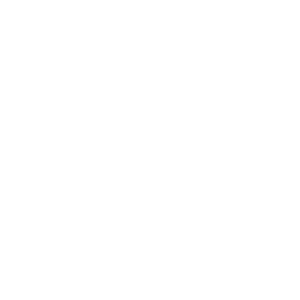 MASTER DISASTER KATASTROPHE