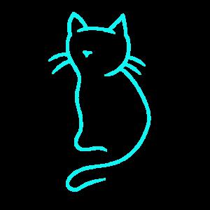 Katze Kätzchen Katzen