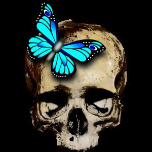 Totenkopf mit Schmetterling / skull butterfly