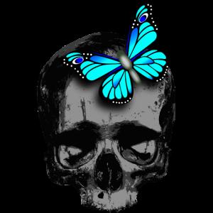 Totenkopf blauer Schmetterling / skull butterfly