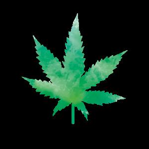 leaf weed