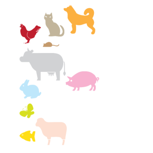 Animal Lover Gifts Be Kind to Every Kind Vegan