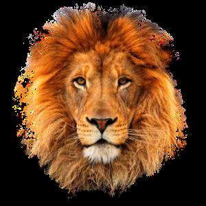 Lion Animal Cool Künstlerische Paint Splatter