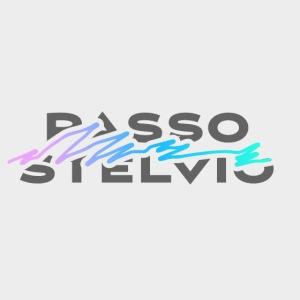 Passo Stelvio Neon