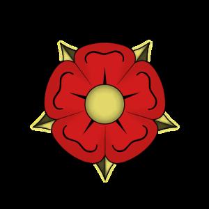 Rose / Lippe