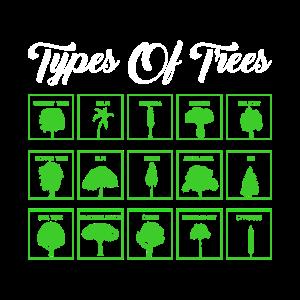 Arten von Bäumen