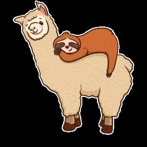 Lustige Trägheit, die auf Lama-Freund schläft