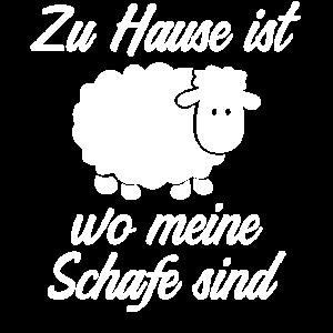 Zuhause Schafe Schaefer Schäfer