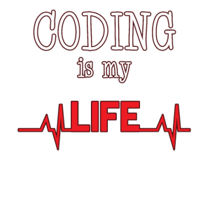 Programmieren Informatik