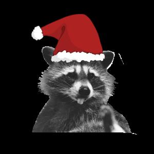 Christmas Weihnachtsmann Waschbär Raccon Christmas