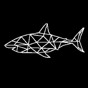 Weißer Hai Raubtier Raubfisch Meerestier
