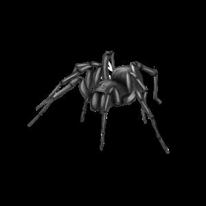 Spinne Frame SW