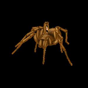 Spinne Frame